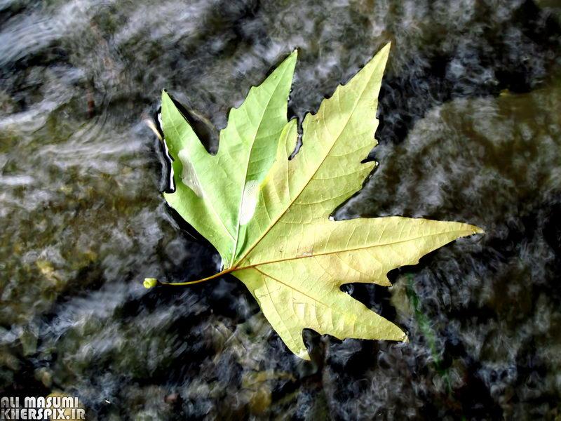 پاییز خوانسار